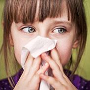 th_allergien